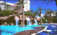 Best Vegas Pools And Pool Clubs Las Vegas Direct